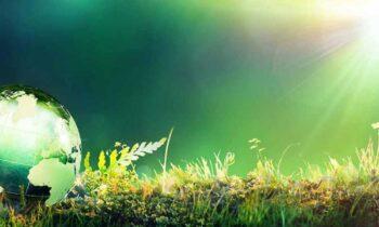 4 سوال درباره پلی اورتان و محیط زیست